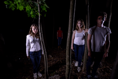 Nikki Haggart, Patrick Fowler, Jocelyn Adema and Francois Macdonald in Tire Swing.