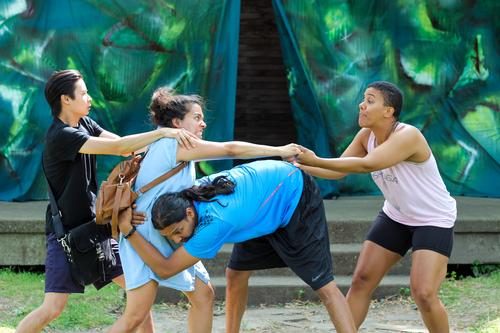 Midsummer Shakespeare in Action