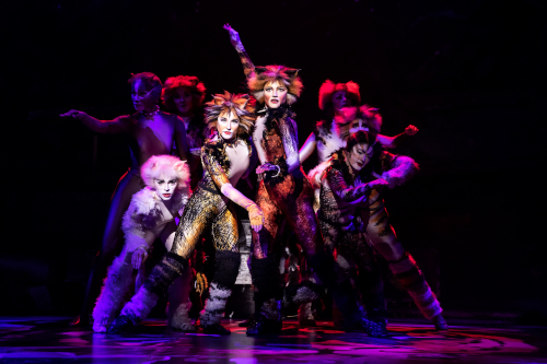 Review Cats Mirvish Mooney On Theatre